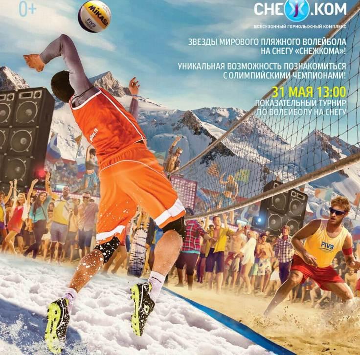 WTM2017_Poster_Snezhkom (1)